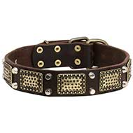 Gorgeous War Dog Leather Collar with Brass Plates Nickel Cones