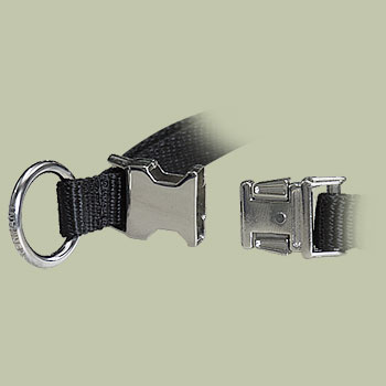 Quick Release Buckle on Chrome-plated Prong Collar