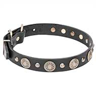 """Magic Necklace"" 1 1/5 inch Wide Leather Dog Collar with Brass Engraved Circles and Small Studs"
