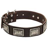 War Style Dog Leather Collar Decorated with Nickel Plates