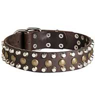 Stunning Pitbull Leather Collar with 3 Rows of Pyramids and Studs