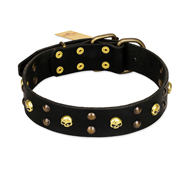 FDT Artisan 'Heavy Metal' Leather Pitbull Collar with Skulls and Half-Balls 1 1/2 inch (40 mm)