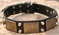 Gorgeous War Dog Leather Dog Collar- brass massive + 2 pyramids