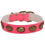 Pink Leather Dog Collar with Brass Figured Ovals