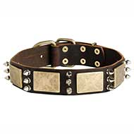 Gorgeous War Dog Leather Dog Collar Made with Massive Brass Plates+3 Spikes