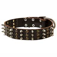 Chic Leather Pitbull Collar with Spikes and Studs Rows