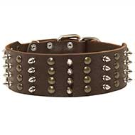 Pitbull Spiked Studded Collar/2 inch Wide Leather Collar Exclusive Presentation