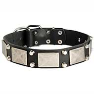 Precious Pitbull Collar - 2 Pyramids + Plate Adorned Leather Collar