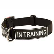 Heavy Duty Patch Nylon Dog Collar for Strong Pitbull