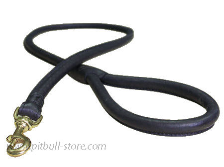 Matching Rolled Leather Dog Lead for Pitbull