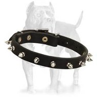 Spiked Dog Collar-Fascinating Leather Dog Collar for Pitbulls
