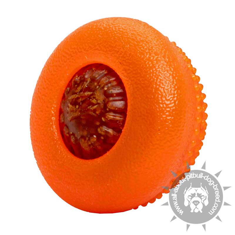 Semisphere Chewing Treat Toy Small Sized