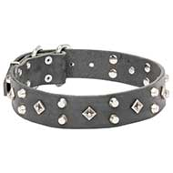 'Pyramid of Cheops' Leather Pitbull Collar with Nickel-plated Decoration