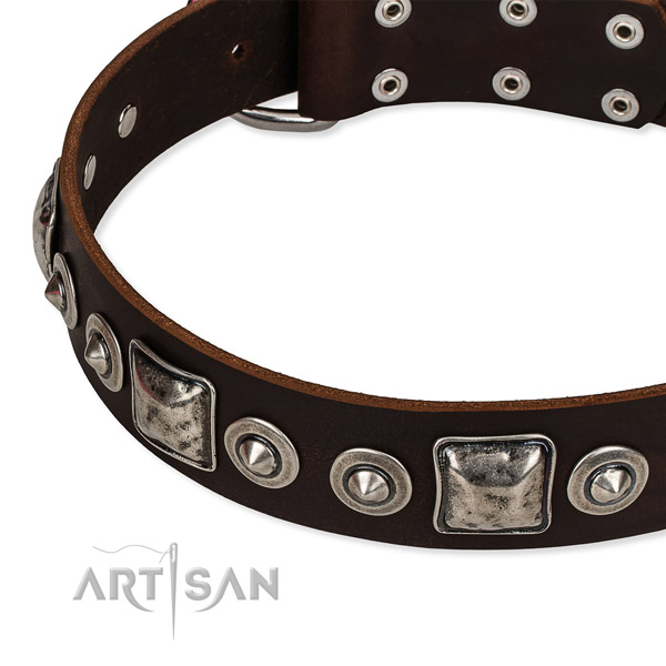 High quality full grain leather dog collar made for your impressive canine