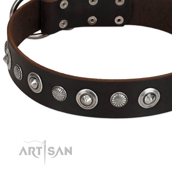 Unique studded dog collar of fine quality genuine leather