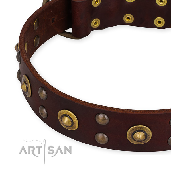 Full grain genuine leather collar with rust-proof hardware for your lovely dog