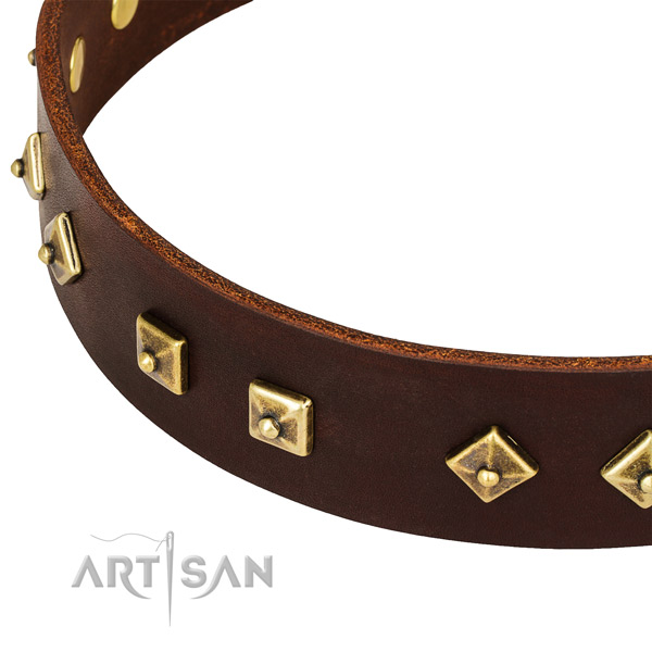 Top notch full grain genuine leather collar for your beautiful doggie