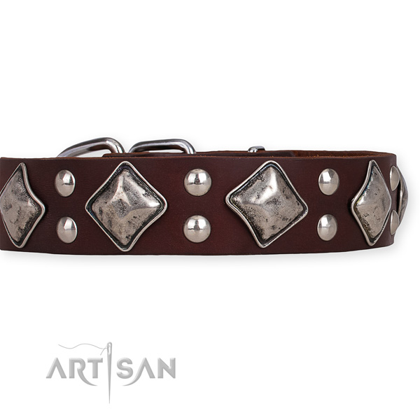 Leather dog collar with amazing rust resistant decorations