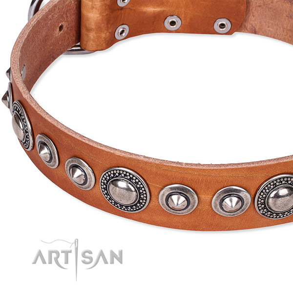 Handy use embellished dog collar of durable full grain natural leather