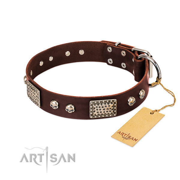 Easy to adjust genuine leather dog collar for daily walking your four-legged friend
