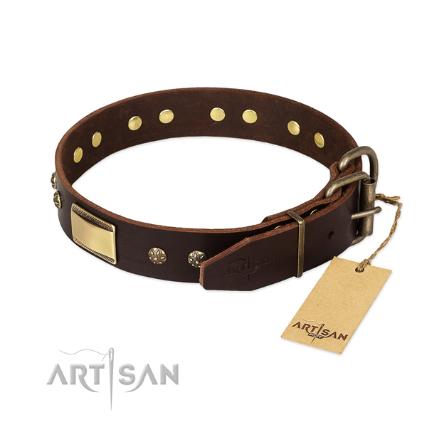 Exceptional genuine leather collar for your canine