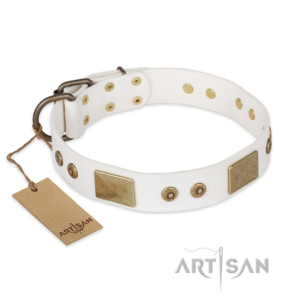 Exquisite leather dog collar for daily use