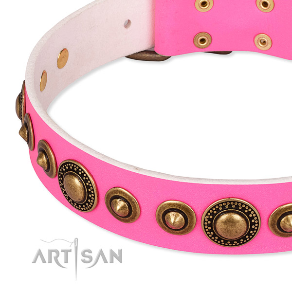 Reliable leather dog collar created for your impressive doggie