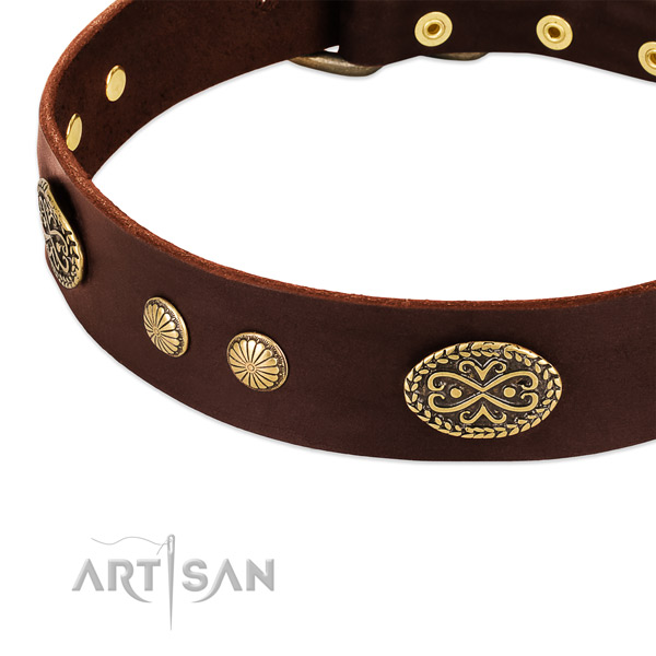 Reliable adornments on Genuine leather dog collar for your four-legged friend