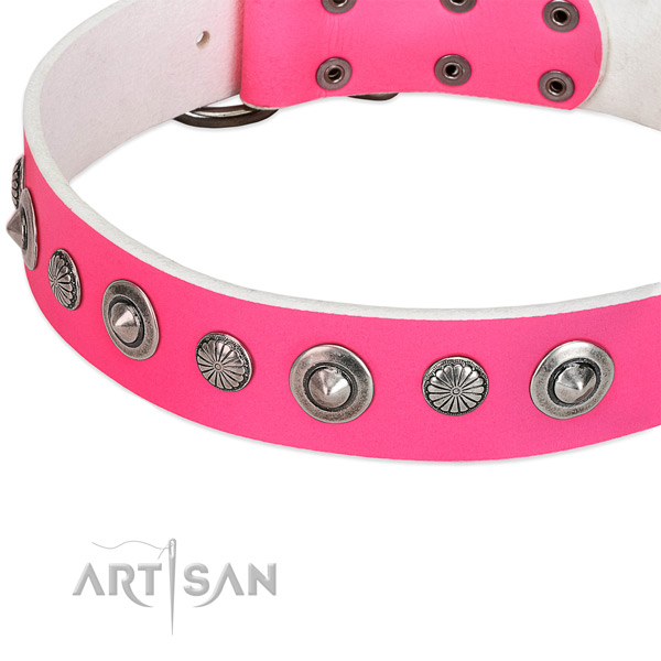 Full grain leather collar with reliable fittings for your stylish pet