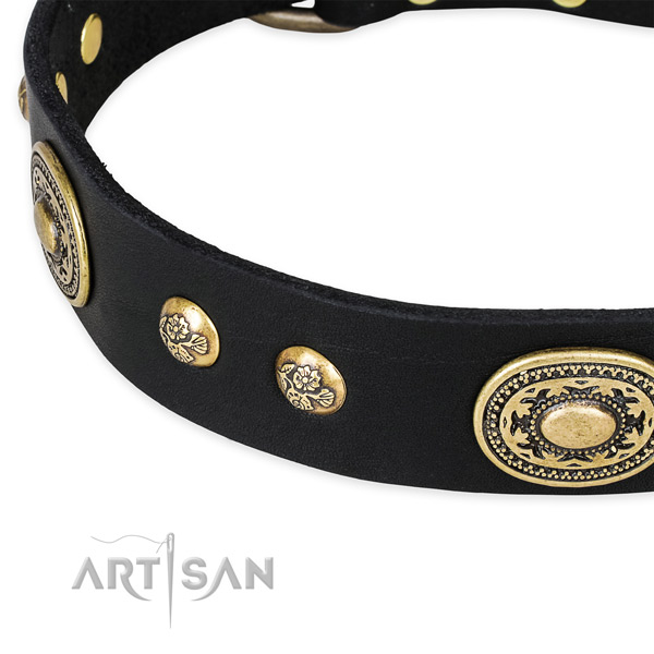 Remarkable genuine leather collar for your attractive doggie