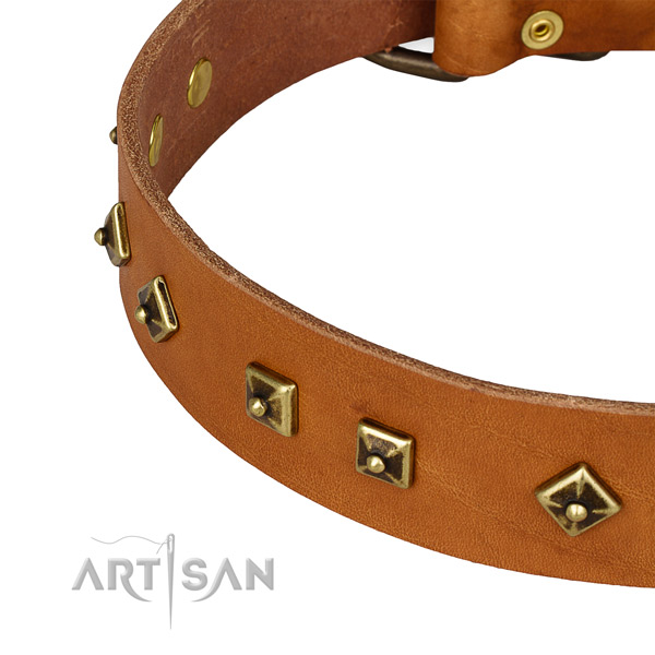 Convenient full grain natural leather collar for your impressive four-legged friend