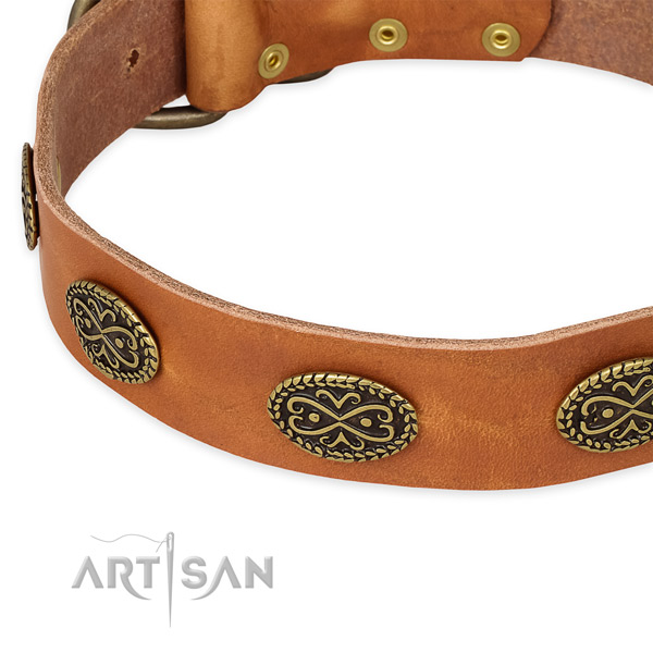 Adorned full grain leather collar for your impressive dog