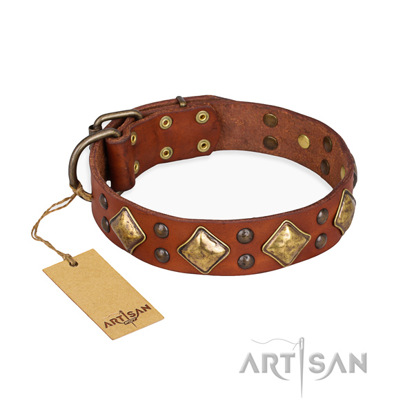 Walking amazing dog collar with rust-proof hardware