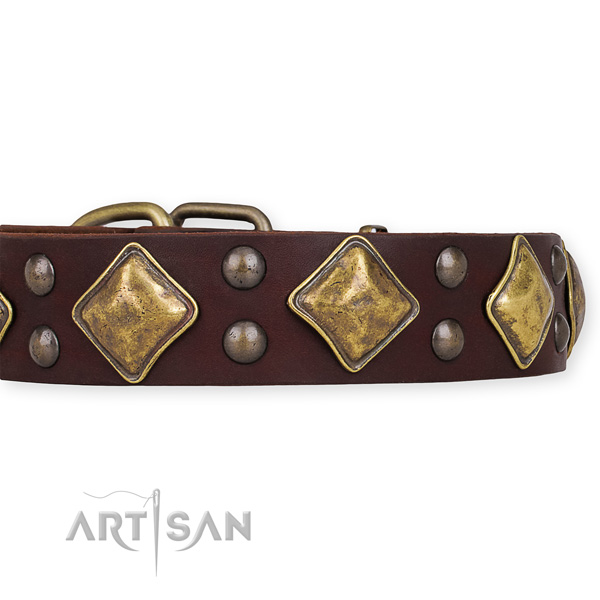 Genuine leather dog collar with trendy durable decorations