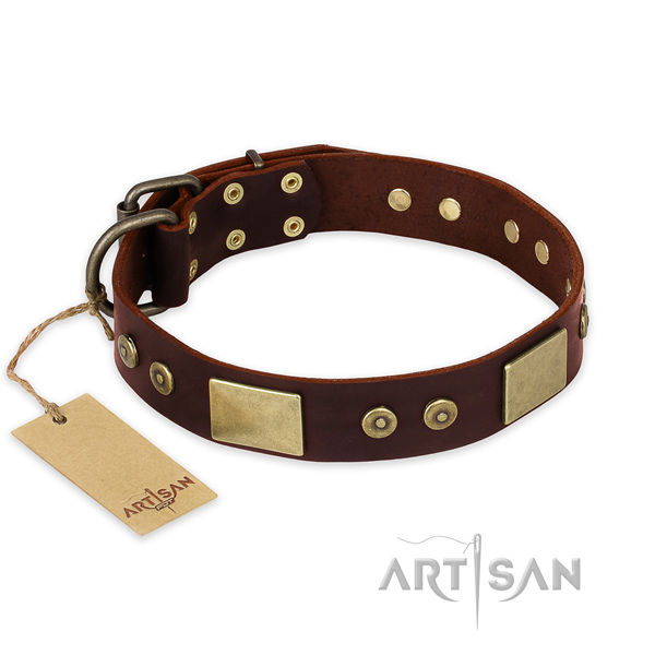Fashionable genuine leather dog collar for everyday use