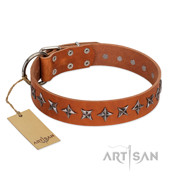 Handy use dog collar of high quality full grain genuine leather with studs