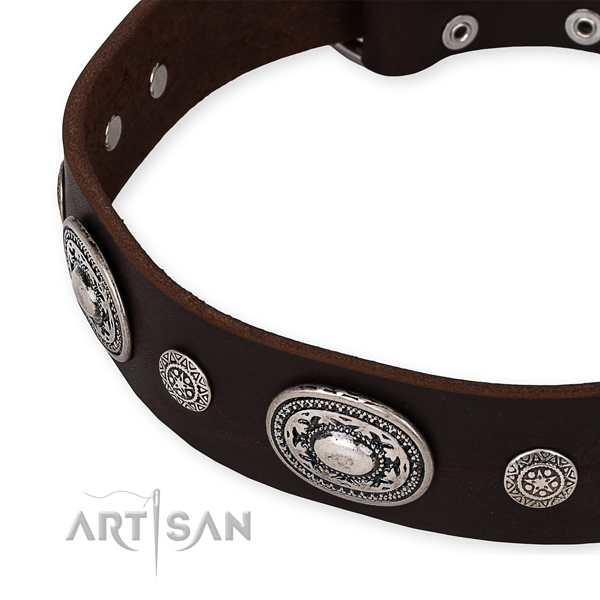 Quality full grain leather dog collar created for your lovely doggie