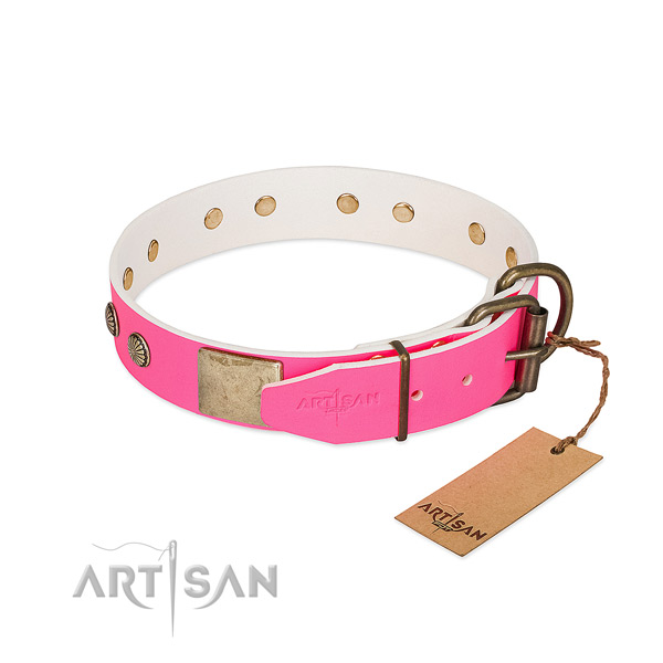 Durable studs on daily use dog collar