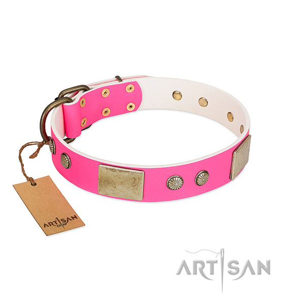 Easy to adjust full grain natural leather dog collar for everyday walking your four-legged friend