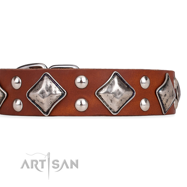 Natural leather dog collar with incredible rust-proof decorations