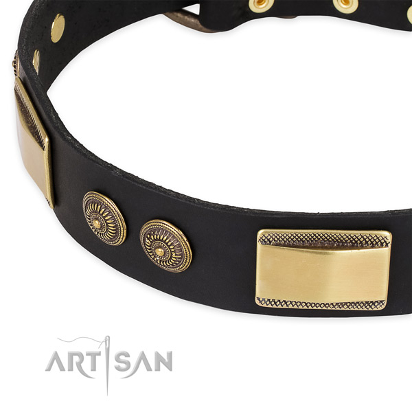 Top notch full grain leather collar for your attractive dog
