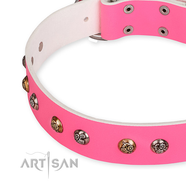 Full grain natural leather dog collar with stylish corrosion resistant studs