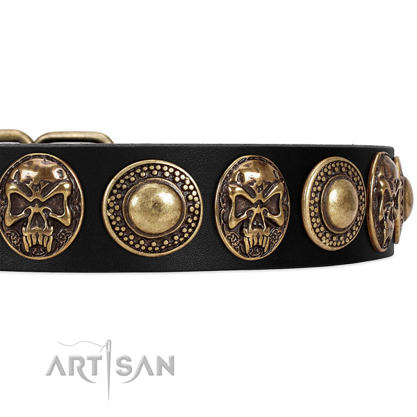 Full grain natural leather dog collar with embellishments for stylish walking