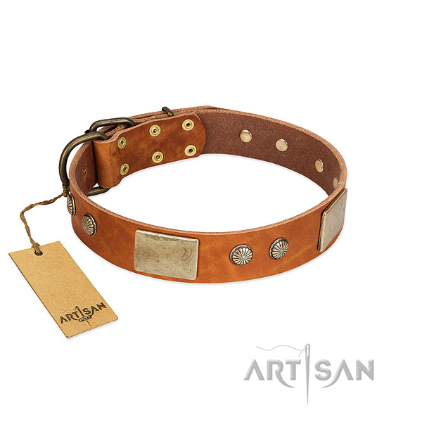 Easy to adjust full grain genuine leather dog collar for basic training your canine