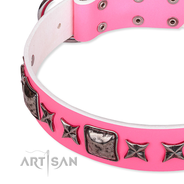 Stylish walking adorned dog collar of strong full grain leather