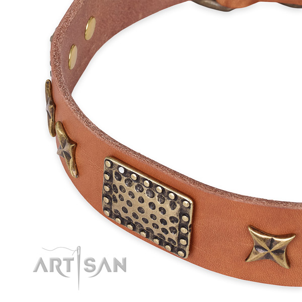 Full grain leather collar with reliable hardware for your lovely canine