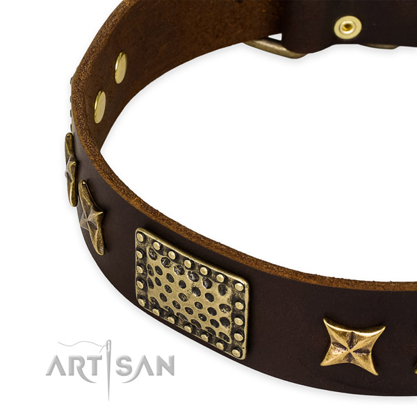Full grain leather collar with corrosion resistant D-ring for your beautiful four-legged friend