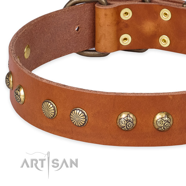 Full grain genuine leather collar with durable D-ring for your stylish dog