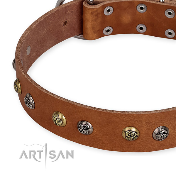 Natural genuine leather dog collar with exceptional corrosion proof embellishments
