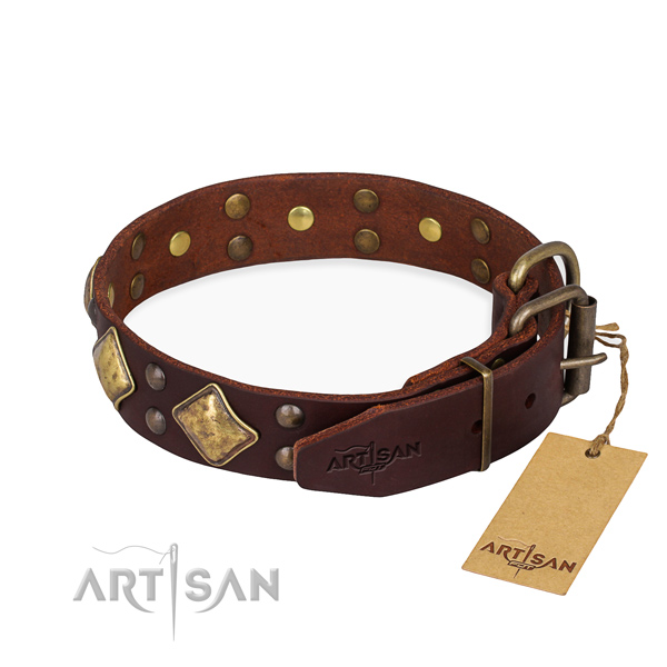 Full grain natural leather dog collar with amazing corrosion proof studs